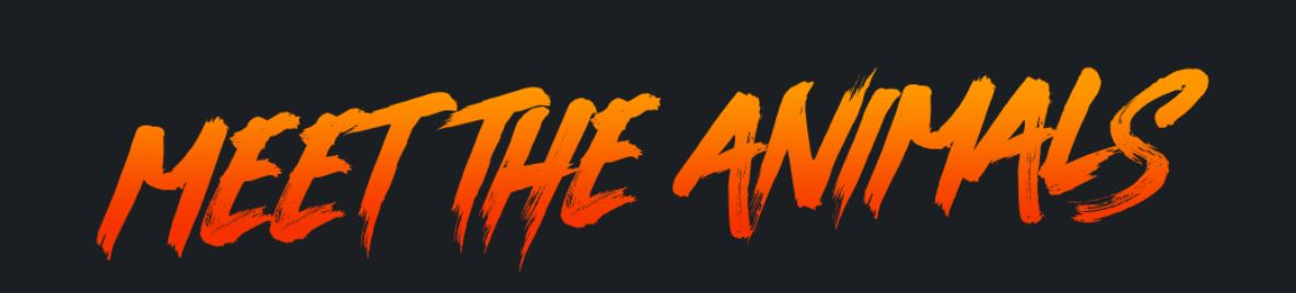 Meet The Animals text in gradient orange shades on black background